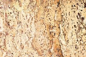 Cork Material Texture Of The Cork Material Stock Photo Picture And Royalty Free