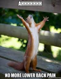 Back Pain Meme - ahhhhhhh no more lower back pain happy squirrel make a meme