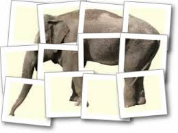 Poem The Blind Man And The Elephant Sflow Finding Elephants