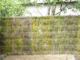 cloture de jardin pas cher delightful cloture jardin pas cher 11 designmag fr homeezy