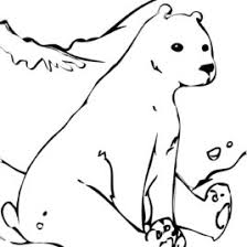 coloring pages tundra animals archives mente beta most complete