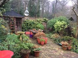 london cottage garden winter gardening blog