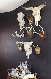 taxidermy home decor 126 best taxidermy images on pinterest anatomy carpets and ceramics