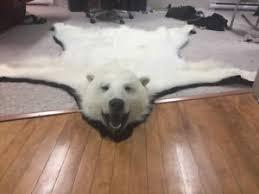 bear rugs kijiji in nova scotia buy sell u0026 save with