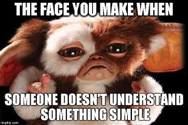 Why You No Love Me Meme - if gizmo was a teacher imgflip