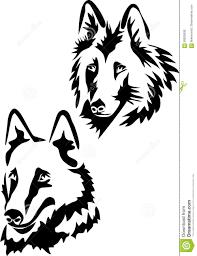 belgian sheepdog merchandise belgian shepherd dog head stock vector image 69925936