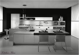Black Kitchen Designs 2013 Delighful Modern Kitchen Ideas 2013 Top Designs Kitchens I