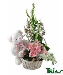 aurora bear baby baby new baby trias florist trias