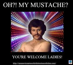 Funny Mustache Memes - the monday meme i mustache you a question arcadia pod