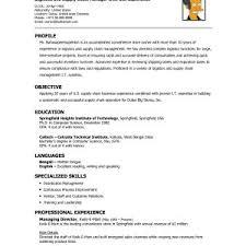 resume profile exles new resume profile exles logistics gotraffic co