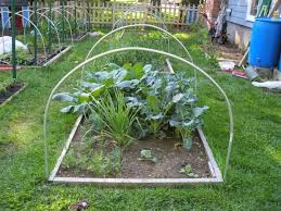hoop houses gardening all year long in new england 4 steps