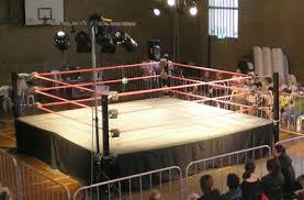 backyard wrestling ring for sale cheap pro wrestling ring misc wrestling pinterest