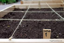 growing vegetables in our driveway the best soil for raised