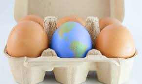 easter 2017 trends compliance trends and predictions for 2017 corruption crime