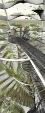 best 25 fish farming ideas on pinterest tilapia fish farming