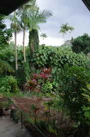 baldy u0026 binzer new apartment and hawaiian christmas tree