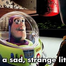 Woody And Buzz Meme - you re a sad sad little man buzz lightyear to woody in toy story