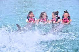 Roatan Map Dolphin Action Swim Anthony U0027s Key Resort Roatan Honduras