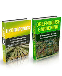 cheap backyard greenhouse gardening find backyard greenhouse