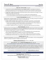 Sample Resume For Supply Chain Executive by Vp It Sample Resume Executive Resume Writing Services For Cio