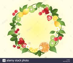 fruits flowers an illustration of a decorative wreath with citrus fruits