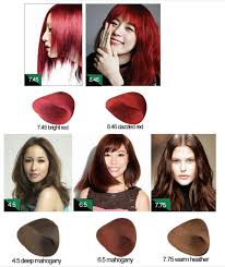 boysen paint hair color chart hair color swatch chart for color