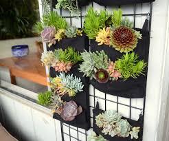 easy vertical gardens u2014 florafelt vertical garden systems