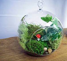 hand blown glass terrariums with seashell white furniture ocinz com