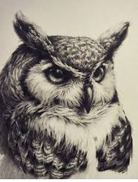 100 owl tattoo beautiful owl tattoos tattoodo realism owl