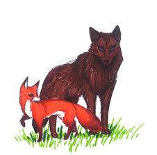 the tea hutch illustrations the fox and the wolf