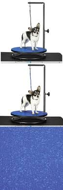 dog grooming tables for small dogs master equipment dog grooming table with arm reviews wayfair