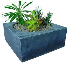 concrete planters archives concrete planters