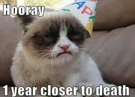 Grumpy Cat Monday Meme - grumpy cat is grumpy meme by blondosaurusrex memedroid