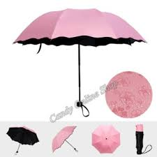 where to buy candy online where to buy candy online anti uv folding umbrella appear flowers