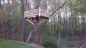 building your own tree house how to build a house tree house building a diy approach handy father
