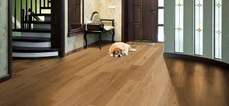 Best Flooring Options Best Flooring Options For Owners Esb Flooring