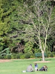 Geelong Botanic Gardens by Eastern Park Walk Walking Maps