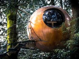 10 coolest treehouses in world take a look inside