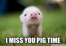 Funny I Miss You Meme - i miss you pig time my life pinterest meme memes and humor