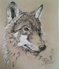 259 best wolves images on pinterest animals wolves and draw