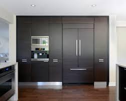 Tall Kitchen Cabinet Ingenious Ideas  Modern HBE Kitchen - High kitchen cabinet