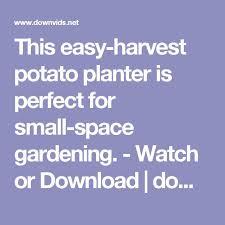 Patio Potato Planters Best 25 Potato Planter Ideas On Pinterest Growing Vegetables