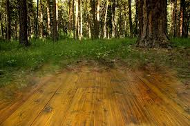 sustainable lumber company reclaimed sustainable wood flooring
