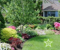 Backyard Shade Trees Best 25 Small Trees Ideas On Pinterest Landscaping Trees