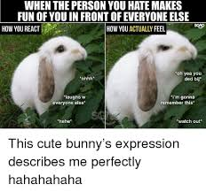 Angry Bunny Meme - when the person you hate makes fun of you in front of everyone