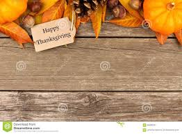 free thanksgiving newsletter templates free thanksgiving email templates contegri com
