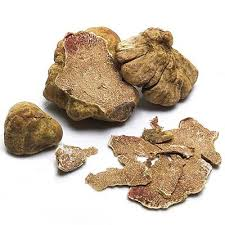 italian white truffle italian white truffles