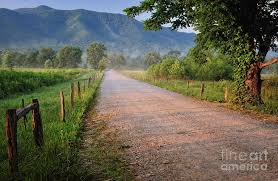 Tennessee Landscapes images First light sparks lane at cades cove tennessee photograph by jpg