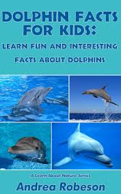 interesting dolphin facts the best fact 2017