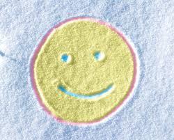 amazon com testors 307587 spray chalk 6 oz white home improvement
